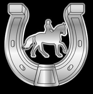 Motivationsabzeichen Silbernes Hufeisen