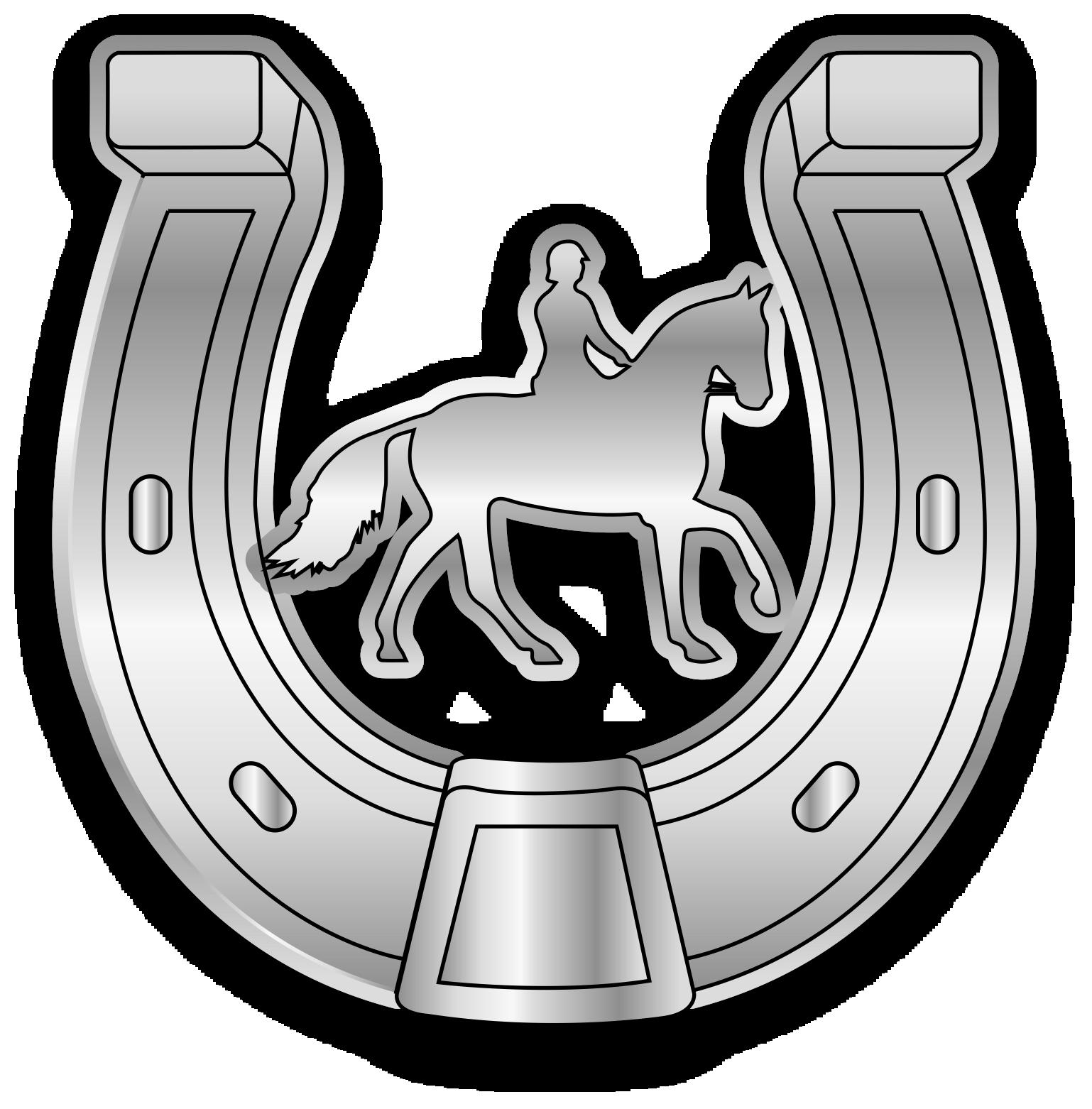 Silbernes Hufeisen